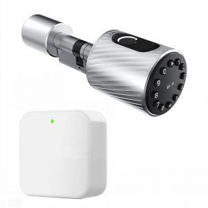 Incuietoare inteligenta usa Wifi amprenta cod bluetooth card butuc C10 argintiu