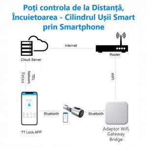 Yala inteligenta WiFi C10 schema comunicare